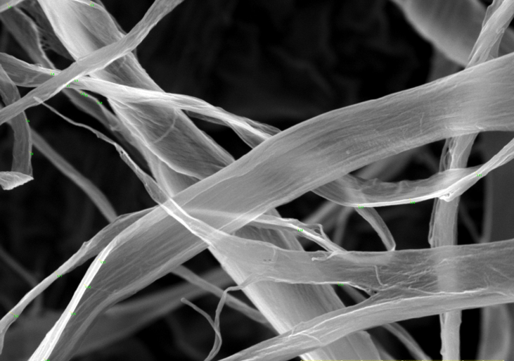 Cellulosic filaments