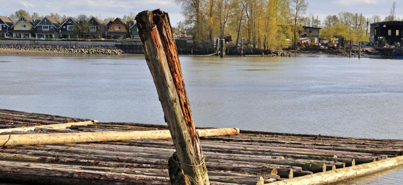 Logs floating