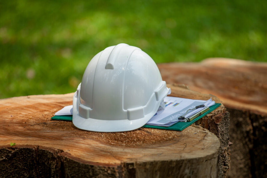 Services to help forest products manufacturers improve their productivity