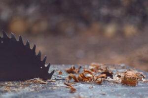 close up sawblade on wood