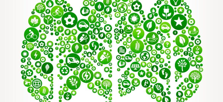 Illustration of trees and environmental symbols