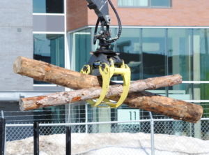 Automated forestry loader