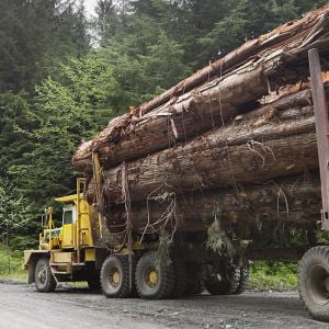 Forest operations logging truck