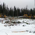 Benchmarking greenhouse gas emissions in forest operations: how you can help!
