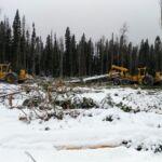 Analyse comparative des émissions de gaz à effet de serre dans les opérations forestières : comment vous pouvez aider !