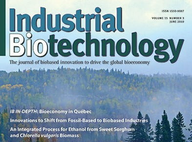 Front cover of Industrial Biotechnology