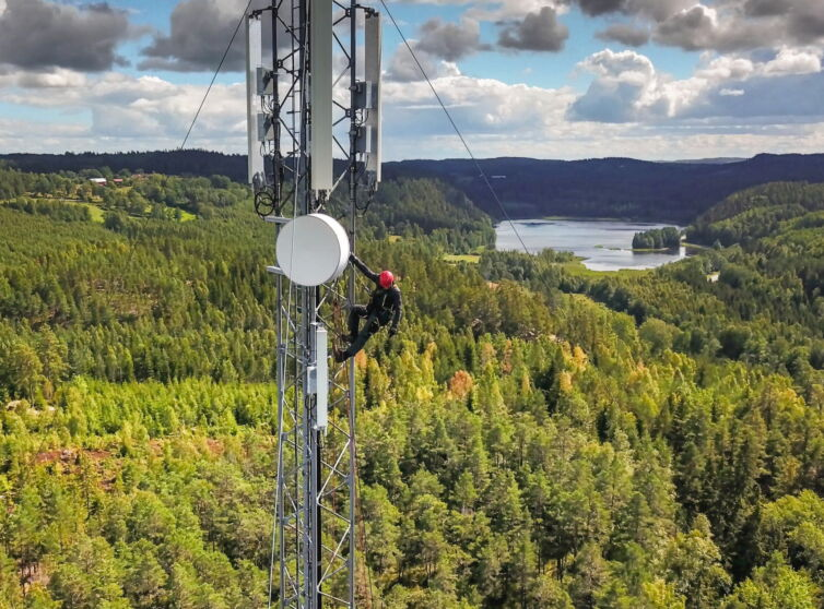 LTE network forest