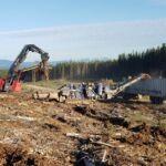 Upcoming webinar series on managing woody fibre