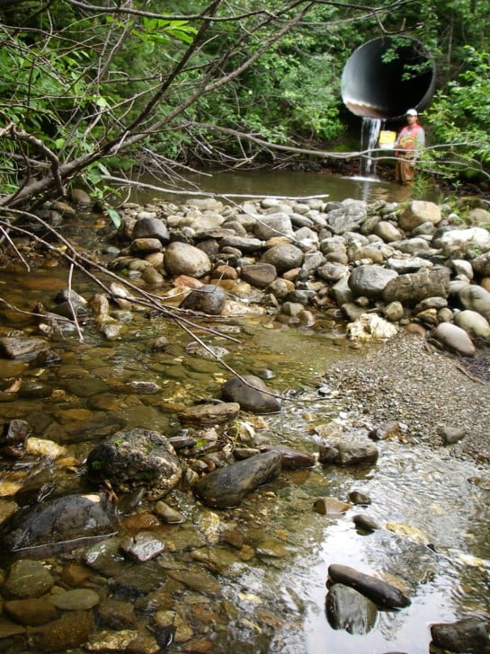 streambed-fifth-guide-2