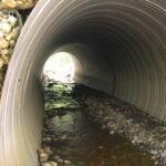 Nouveau guide sur les ruisseaux à poissons maintenant disponible