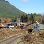 Début des ateliers sur la gestion des débris ligneux en janvier en C.-B.