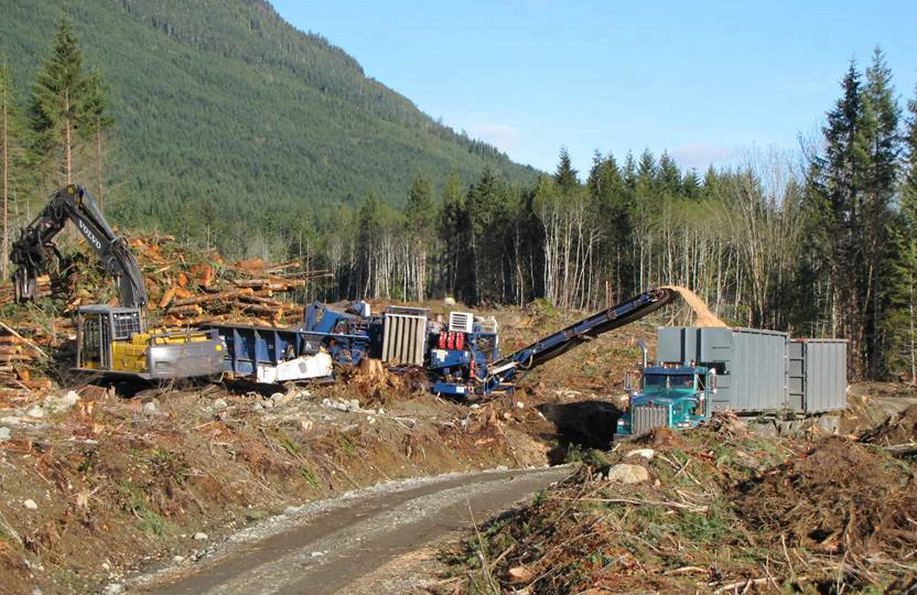 Forest harvesting of small trees